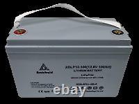 12V 100Ah Lithium Ion (LiFePO4) Leisure Battery